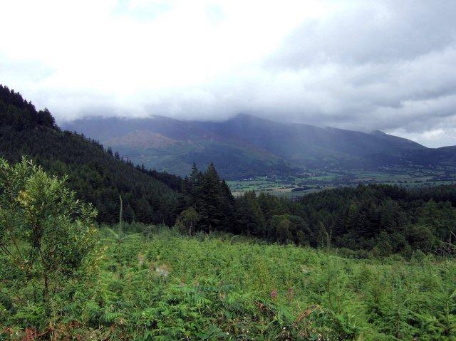 Skiddaw from Whinlatter Pass