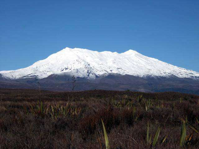 View of Ruapehu