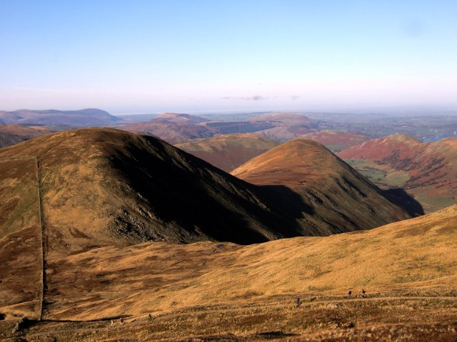 Rest Dodd from the Knott