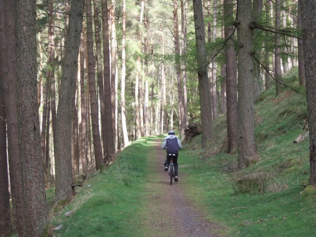 On the Elan Valley Cycle Trail