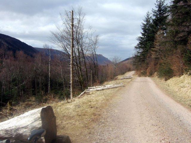 Ennerdale bridleway