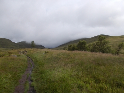 Ben Lawers Nature Reserve